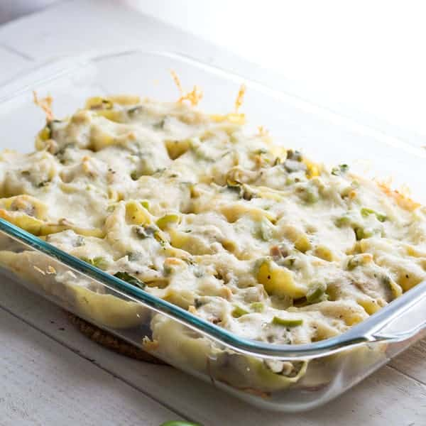 Cheesy Jalapeño and Chicken Stuffed Pasta Shells in baking dish after baking