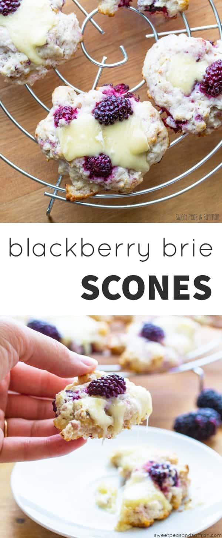 Blackberry, Walnut & Brie Scones: sweet blackberries, crunchy walnuts and creamy brie in a tender, flaky scone.  @sweetpeasaffron