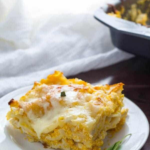 butternut squash lasagna slice on white plate