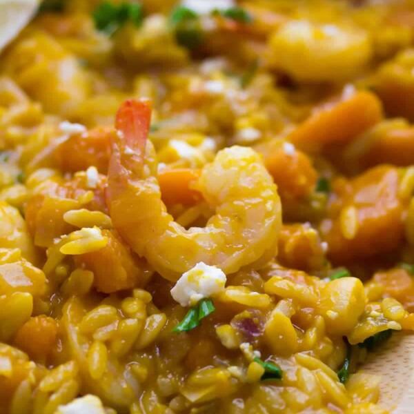 close up shot of shrimp and squash orzo