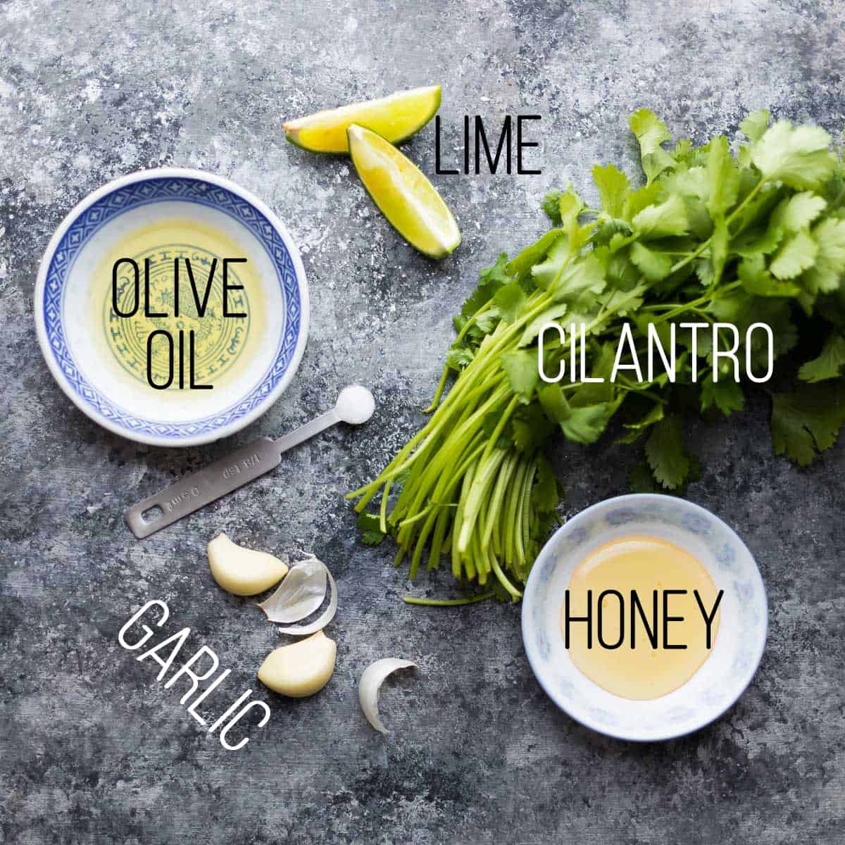 overhead view of ingredients for the cilantro lime chicken marinade recipes