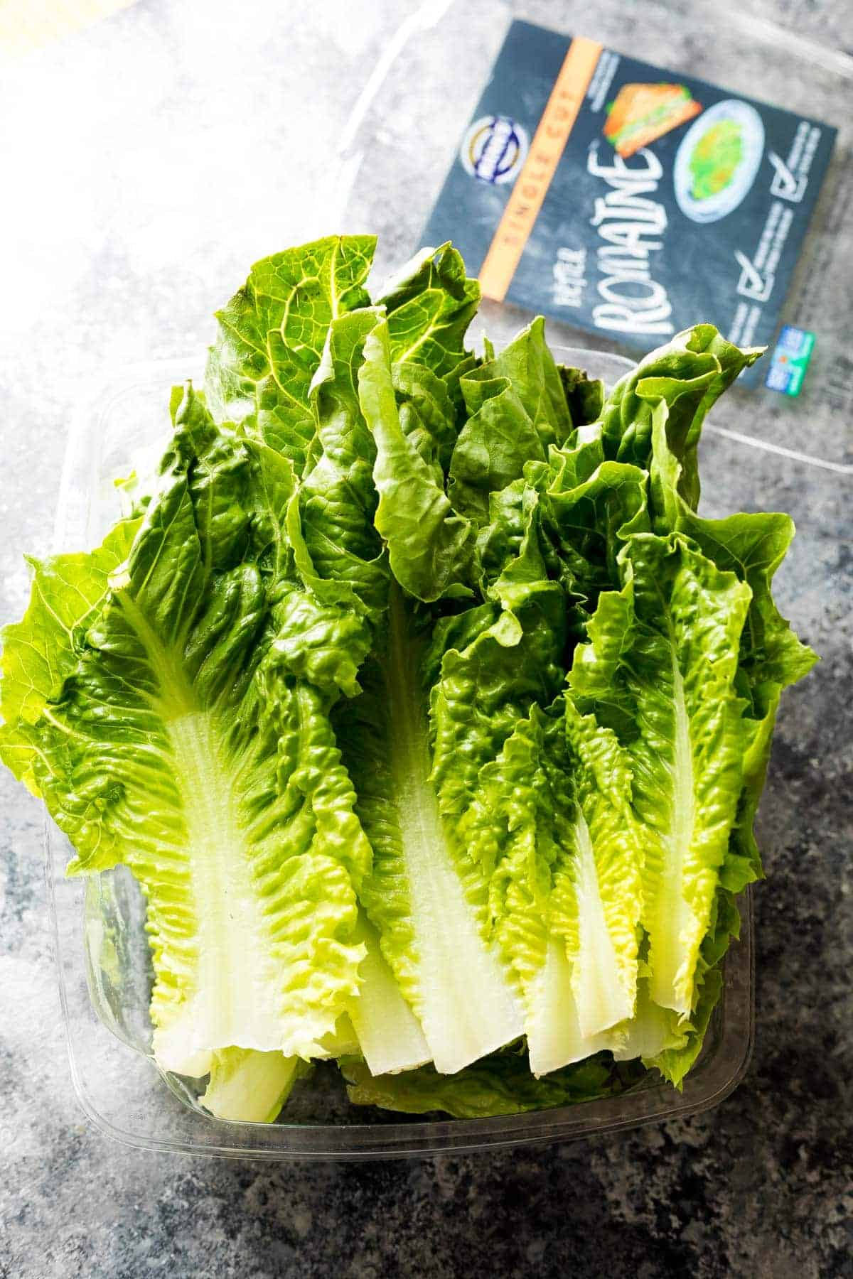 Fresh romaine lettuce for thai lettuce wraps