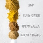 ingredients lined up for indian spice blend with labels on white background