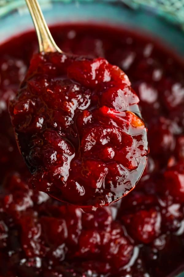 close up shot of the homemade cranberry sauce on a spoon