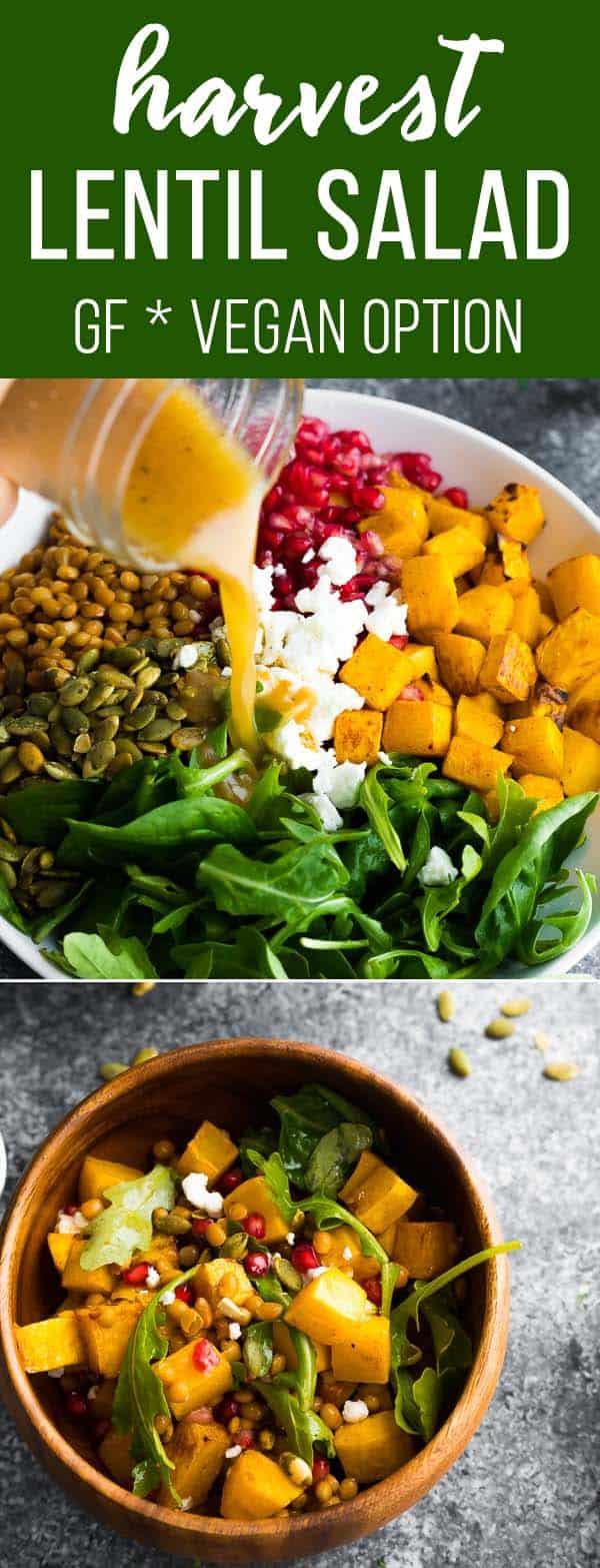 Havest lentil salad has roasted butternut squash, arugula, pomegranates, goat cheese and pumpkin seeds. Make a meal out of it or serve as a side dish. #sweetpeasandsaffron #veganfriendly #salad #lentils #thanksgiving #christmas