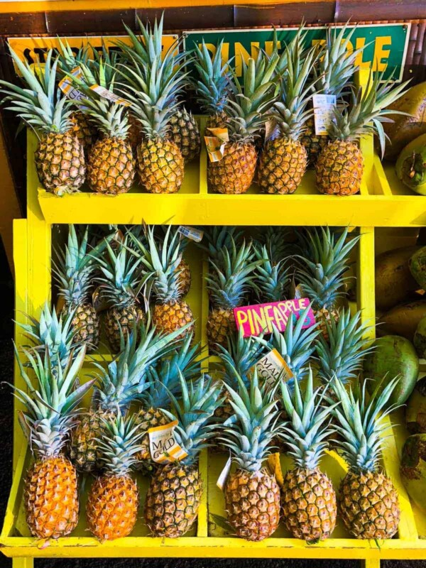 Rows of pineapples on yellow shelving