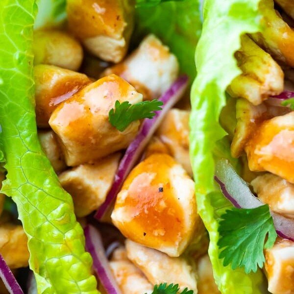 Close up shot of barbecue chicken lettuce wraps