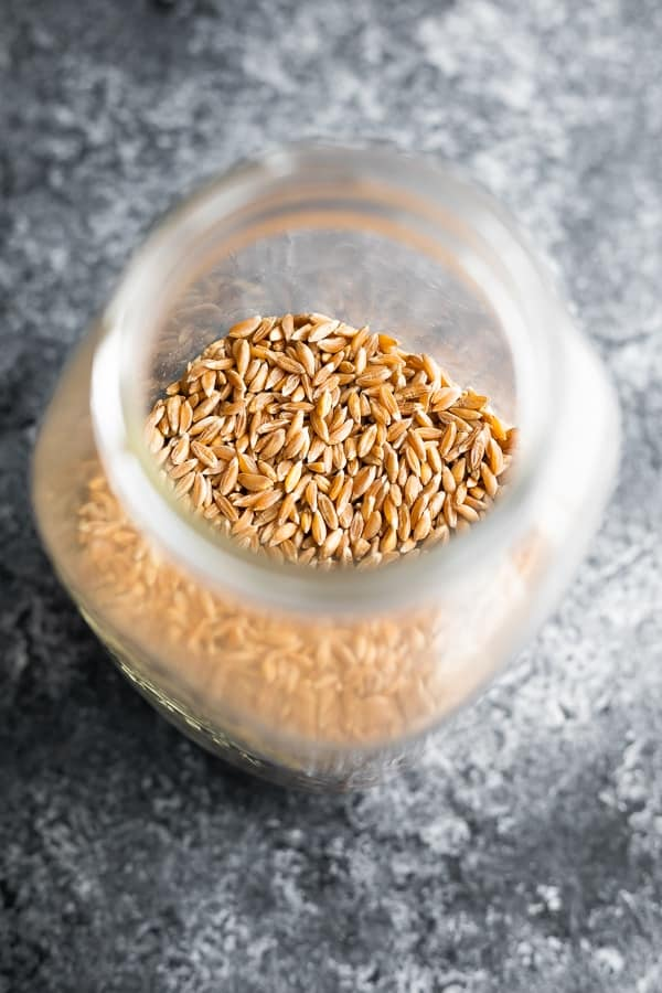 what is farro- showing uncooked farro in a jar