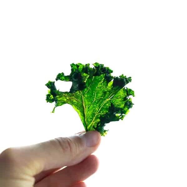 hand holding up a crispy baked kale chips