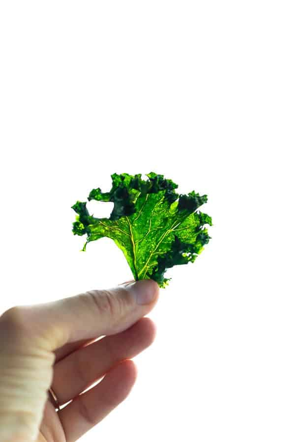 hand holding up a crispy baked kale chips