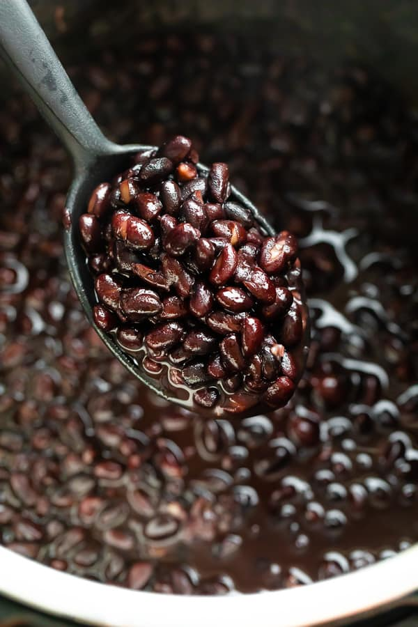 close up shot of cooked black beans on spoon