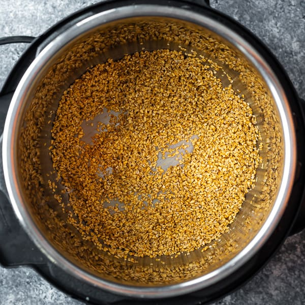 toasting steel cut oats in an instant pot