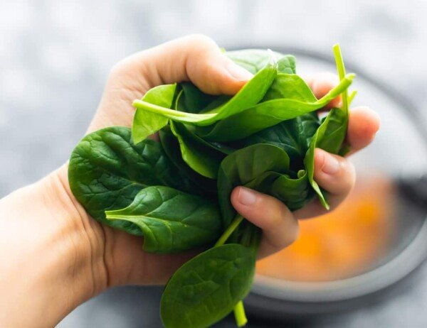 hand holding fresh spinach