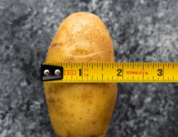 potato with measuring tap measuring 1.5 inches