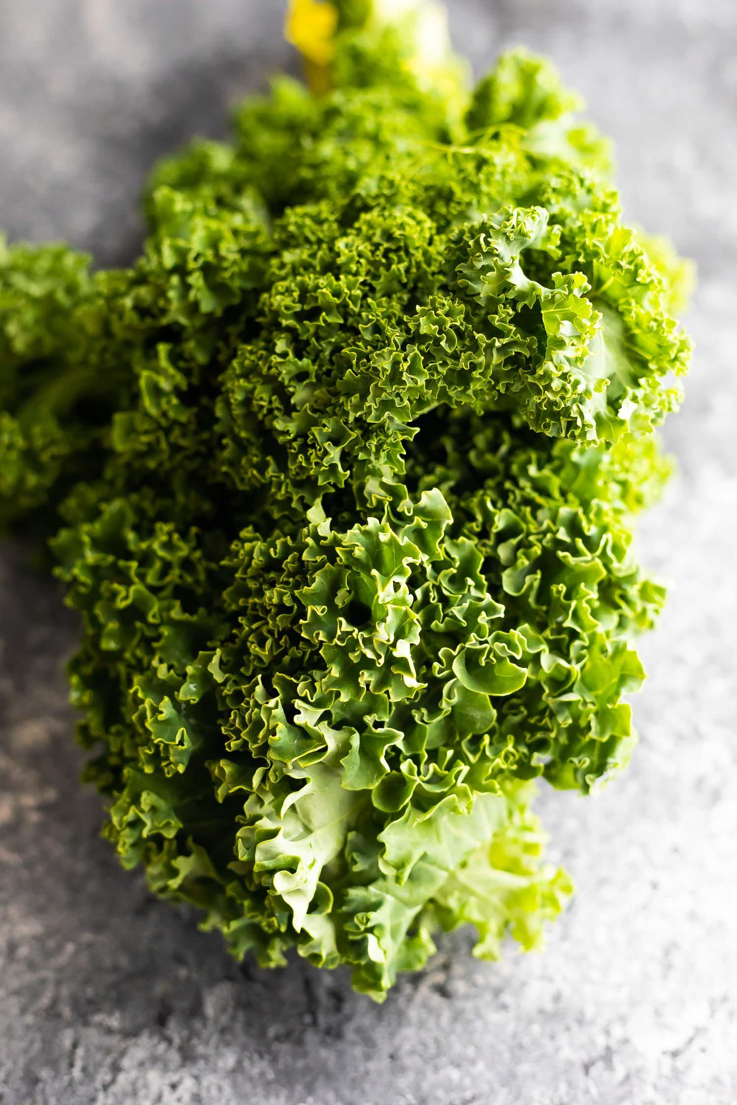 bundle of curly kale