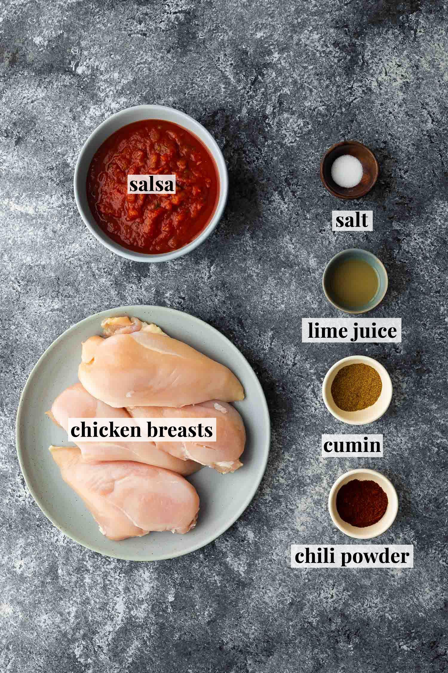 ingredients required to make salsa chicken