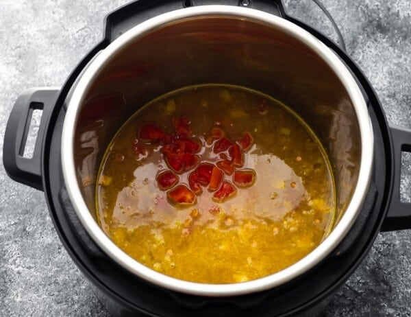 ingredients for dal in instant pot before cooking